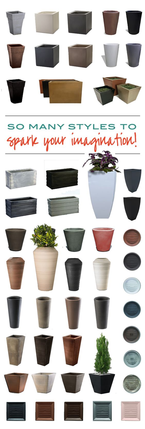 Plant Pots to Choose From